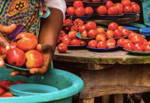 Join the UN Food Safety Contest